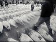 ave-bonar-photo-tuna-auction-tsukiji-market-tokyo-japan