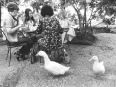 ave-bonar-photography-women-and-ducks